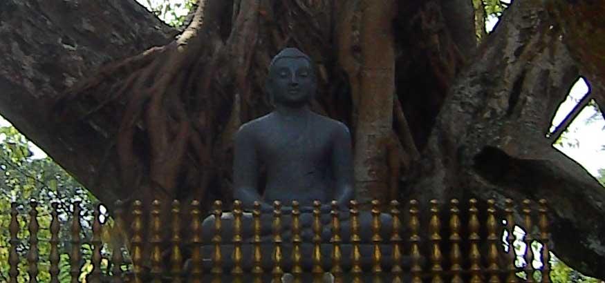B_Sri-Lanka_3672_04_verkl.